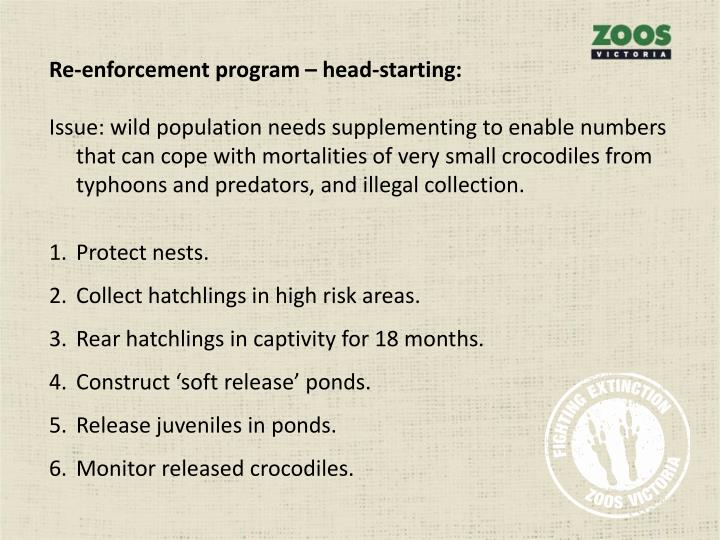 Re-enforcement program – head-starting: