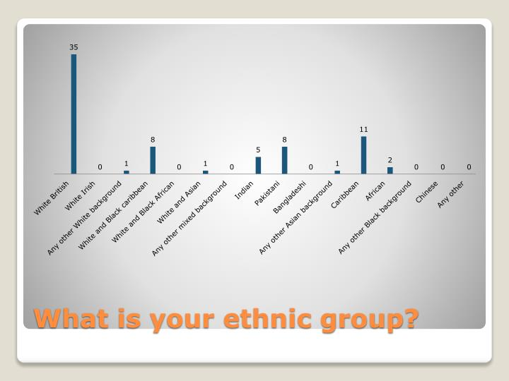 What is your ethnic group?