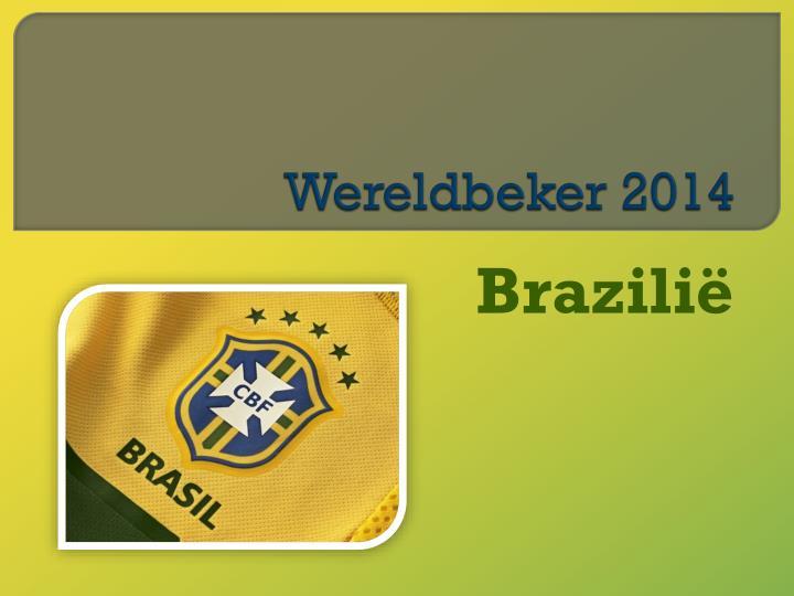 Wereldbeker 2014
