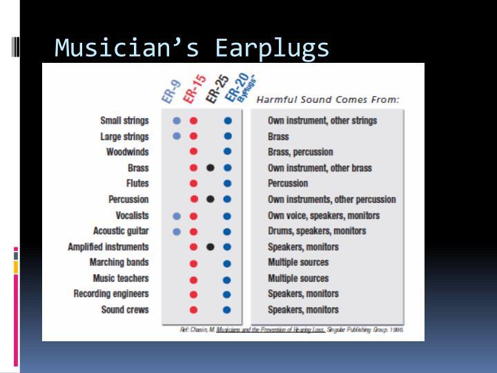 Musician's Earplugs