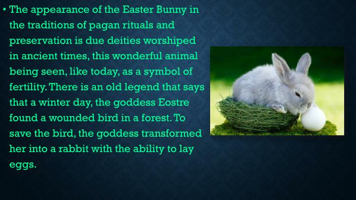 The appearance of the Easter Bunny in the traditions of pagan rituals and preservation is due deities worshiped in ancient times, this wonderful animal being seen, like today, as a symbol of fertility. There is an old legend that says that a winter day, the goddess