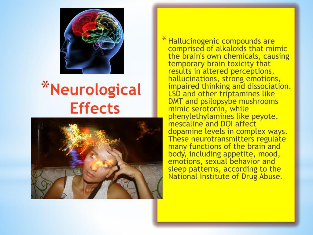 PPT - Hallucinogens PowerPoint Presentation - ID:1845226