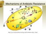 mechanisms of antibiotic resistance