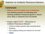 selection for antibiotic resistance bacteria5