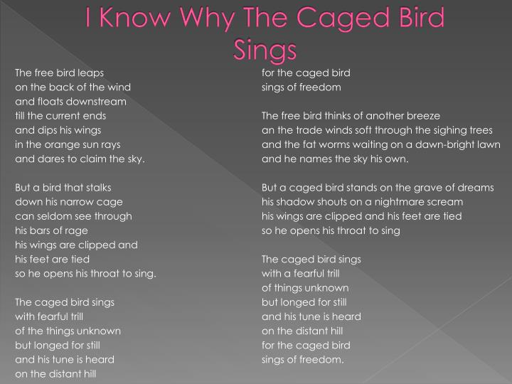 why the caged bird sings essay Contrast the female characters in i know why the caged bird sings with those of the poem our grandmothers from angelou's i shall not be moved 14 discuss angelou's comment in ebony magazine in february 1982: black people    comprehend the south.