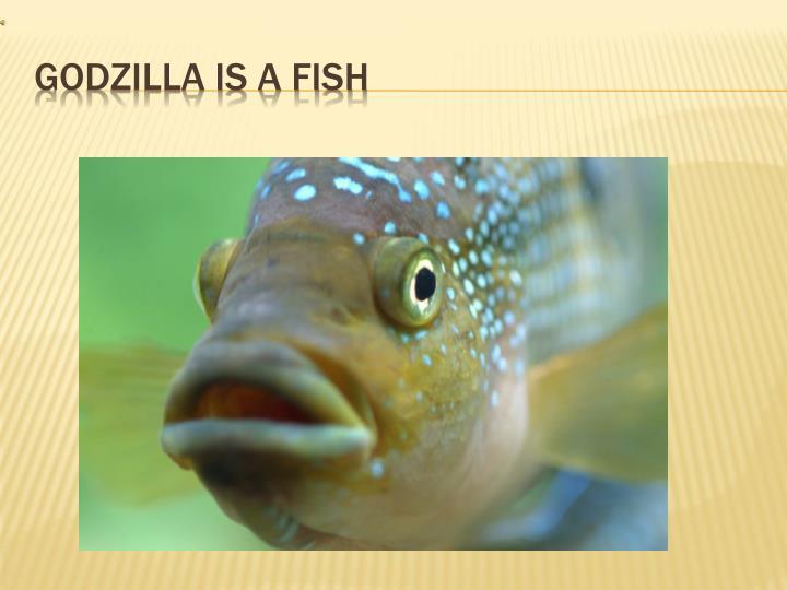 Godzilla is a fish