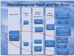 maculopapular rash and no fever