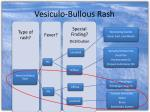 vesiculo bullous rash2