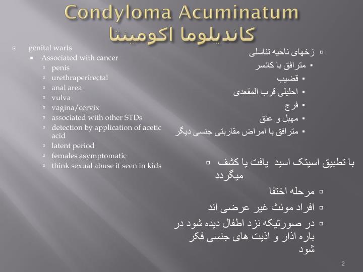 Condyloma acuminatum
