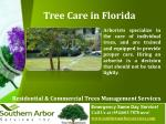 tree care in florida
