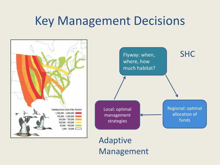 Key Management Decisions