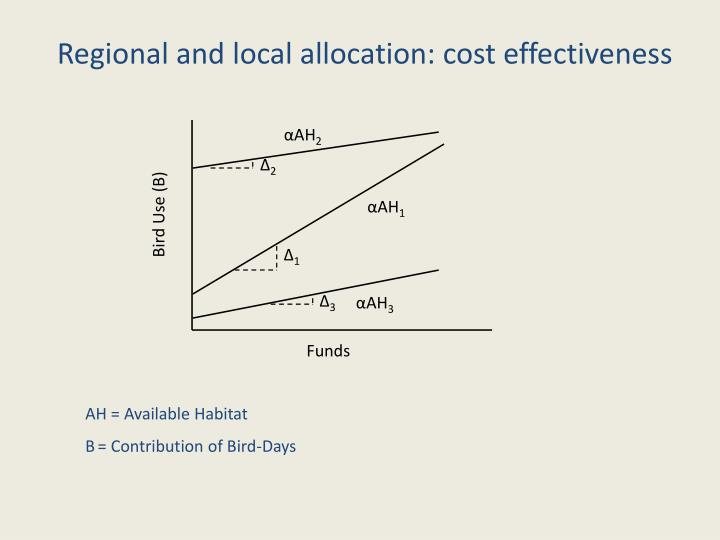 Regional and local allocation: cost effectiveness