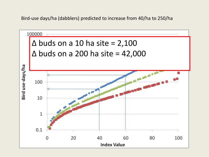 Bird-use days/ha (dabblers) predicted to increase from 40/ha to 250/ha