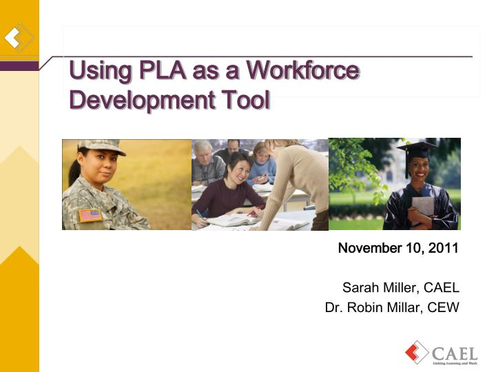 using pla as a workforce development tool n.