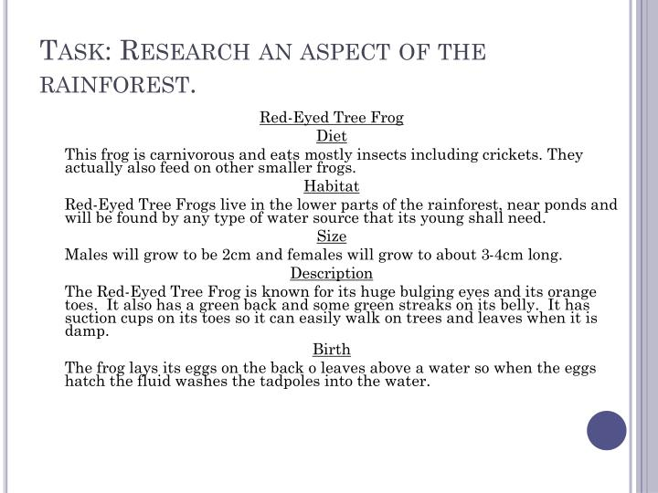 Task: Research an aspect of the rainforest.