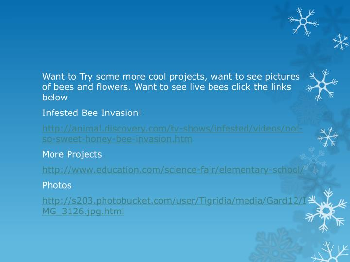 Want to Try some more cool projects, want to see pictures of bees and flowers. Want to see live bees click the links below