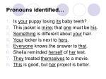 pronouns identified