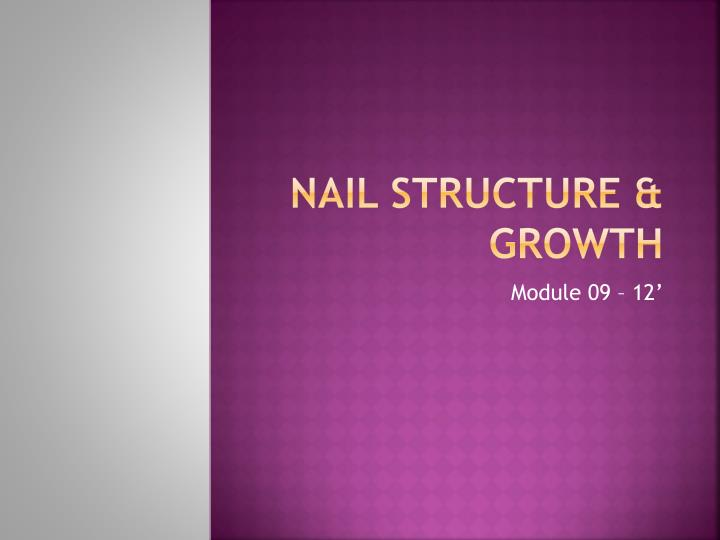 nail structure growth n.