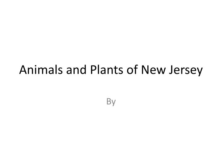 animals and plants of new jersey n.