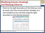 modifying column headings and resizing columns1