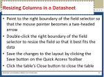resizing columns in a datasheet
