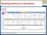 resizing columns in a datasheet1