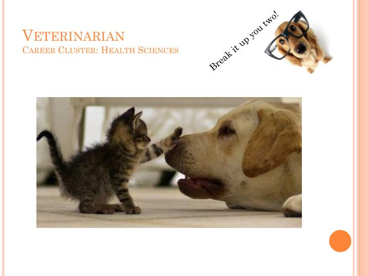 Veterinarian career cluster health sciences