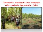 community participation for mangrove reforestation in ayeyarwady delta