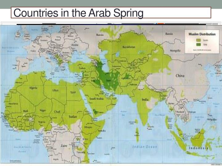 arab spring complete research work