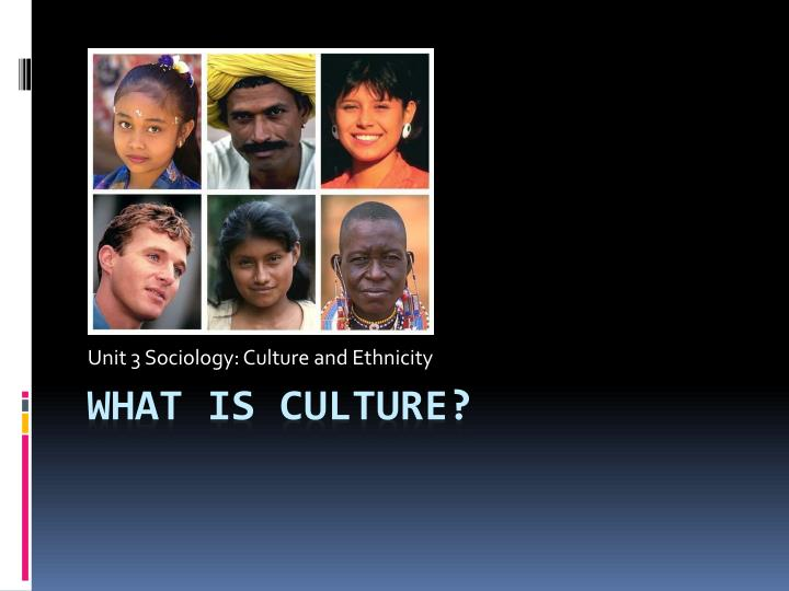unit 3 sociology culture and ethnicity n.