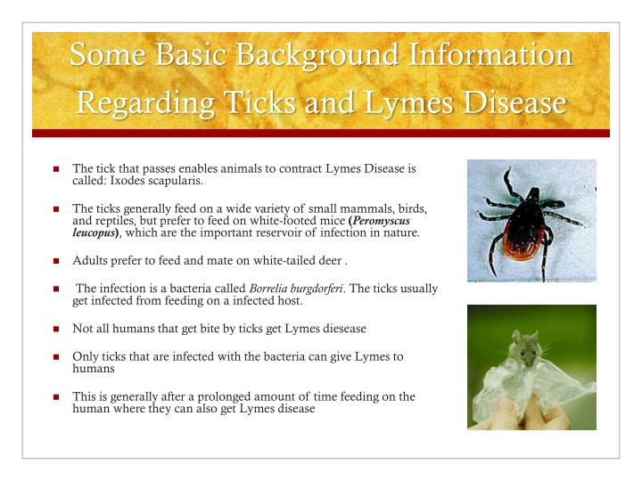 Some basic background information regarding ticks and lymes disease