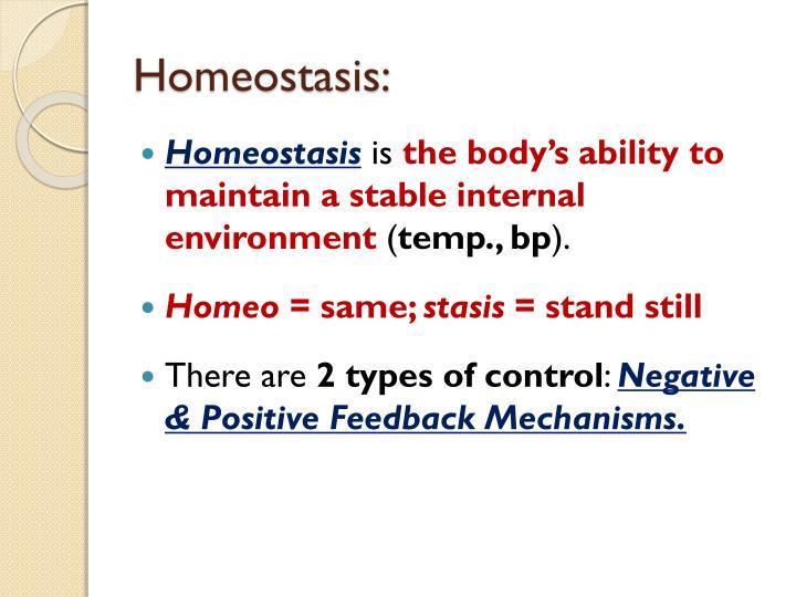 Homeostasis: