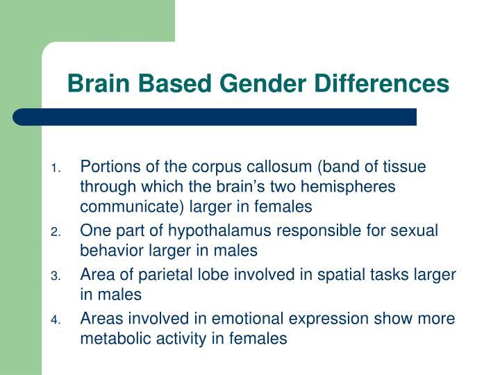 Brain Based Gender Differences