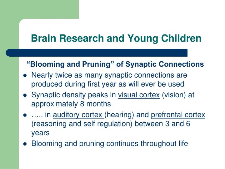 Brain Research and Young Children