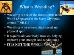 what is wrestling