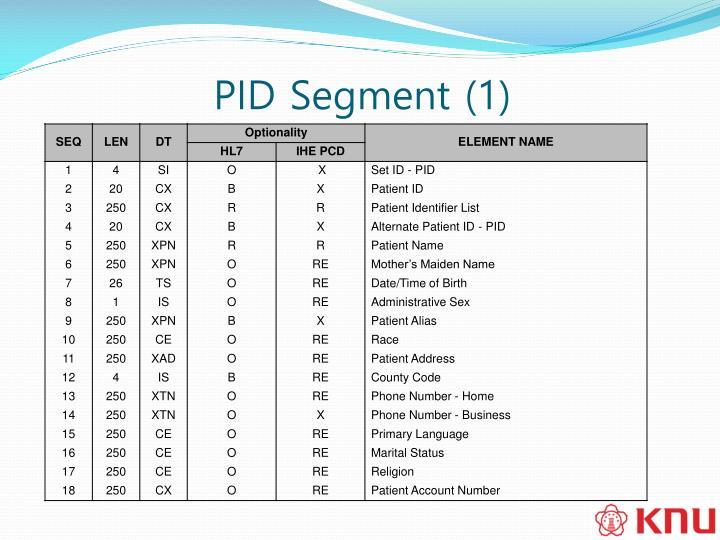 PID Segment (1)