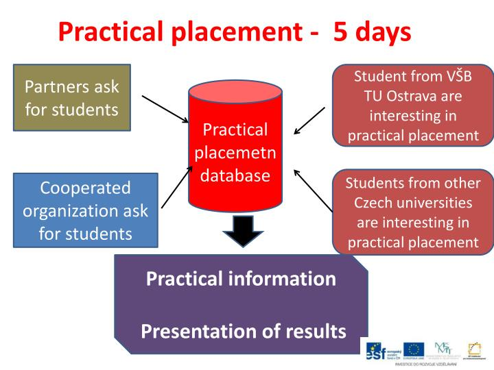 Practical placement -  5 days