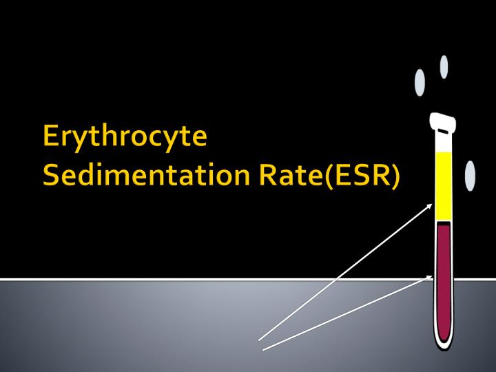 erythrocyte sedimentation rate esr essay Advertisements: in this article we will discuss about the meaning and physiological variation of erythrocyte sedimentation rate (esr) essays, articles and other.