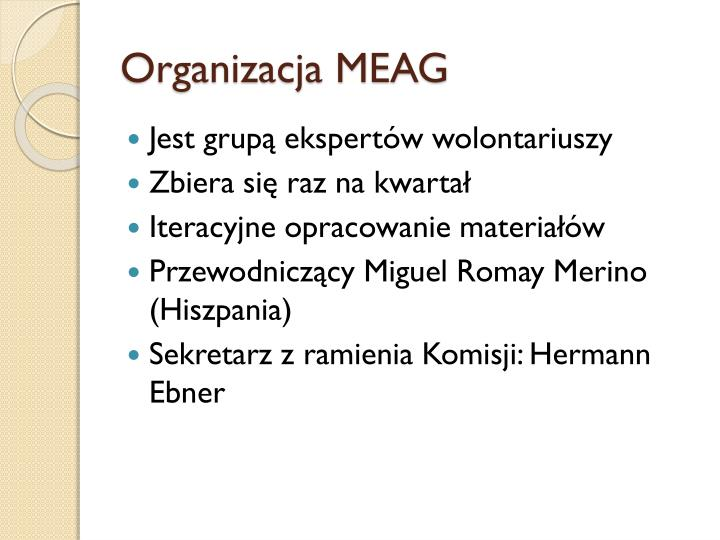 Organizacja meag