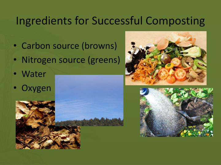 Ingredients for Successful Composting