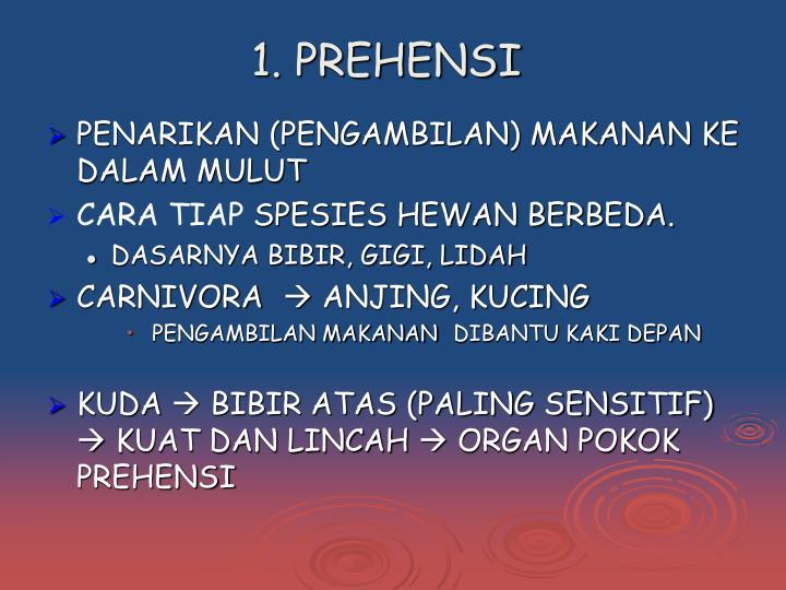 1. PREHENSI