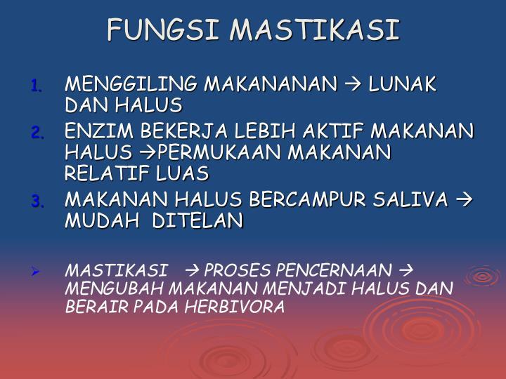 FUNGSI MASTIKASI