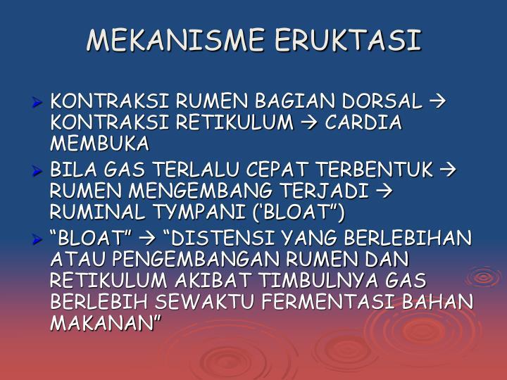 MEKANISME ERUKTASI