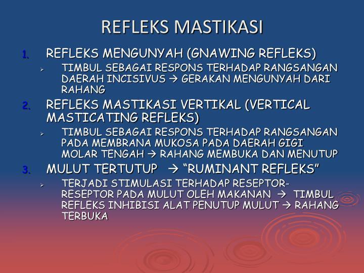 REFLEKS MASTIKASI