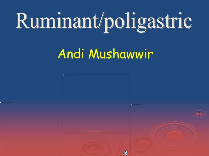 Ruminant/poligastric