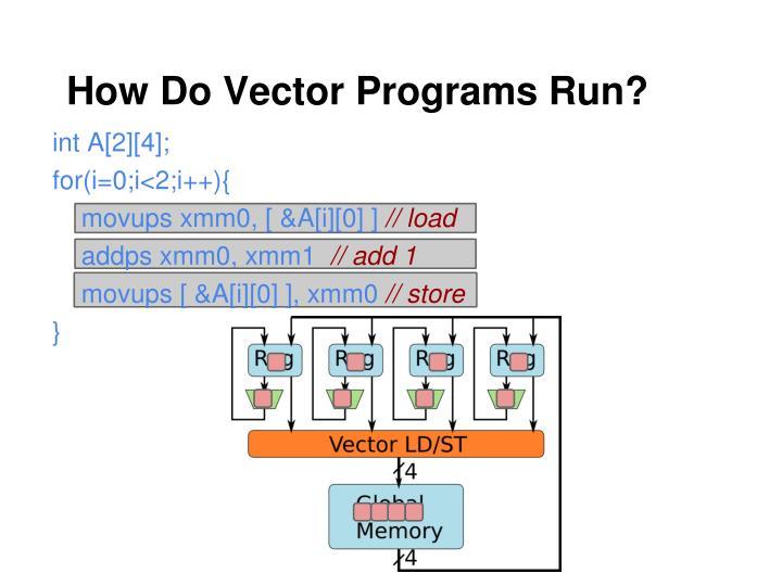 How Do Vector Programs Run?