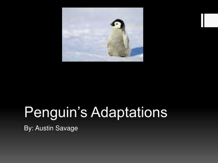 P enguin s adaptations