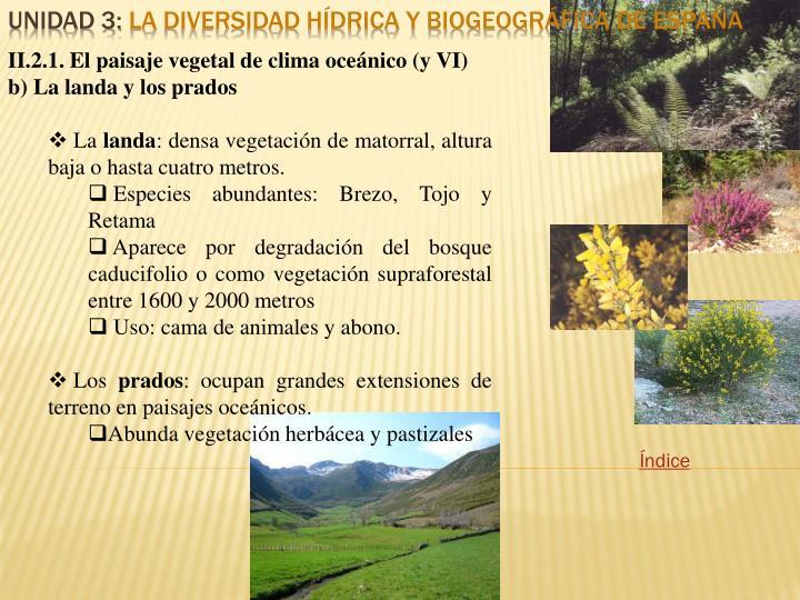 II.2.1. El paisaje vegetal de clima oceánico (y VI)