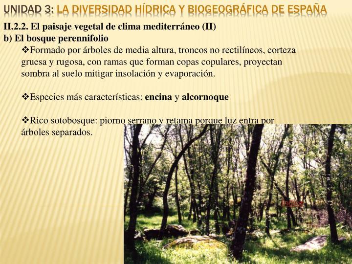 II.2.2. El paisaje vegetal de clima mediterráneo (II)