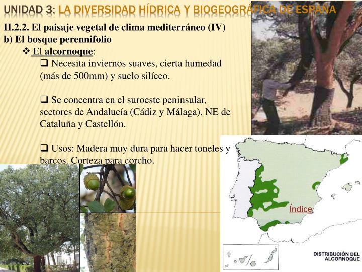 II.2.2. El paisaje vegetal de clima mediterráneo (IV)